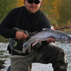 A DOLLY I CAUGHT IN THE FALL ON THE UPPER KENAI RIVER