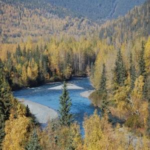 kenai river 1