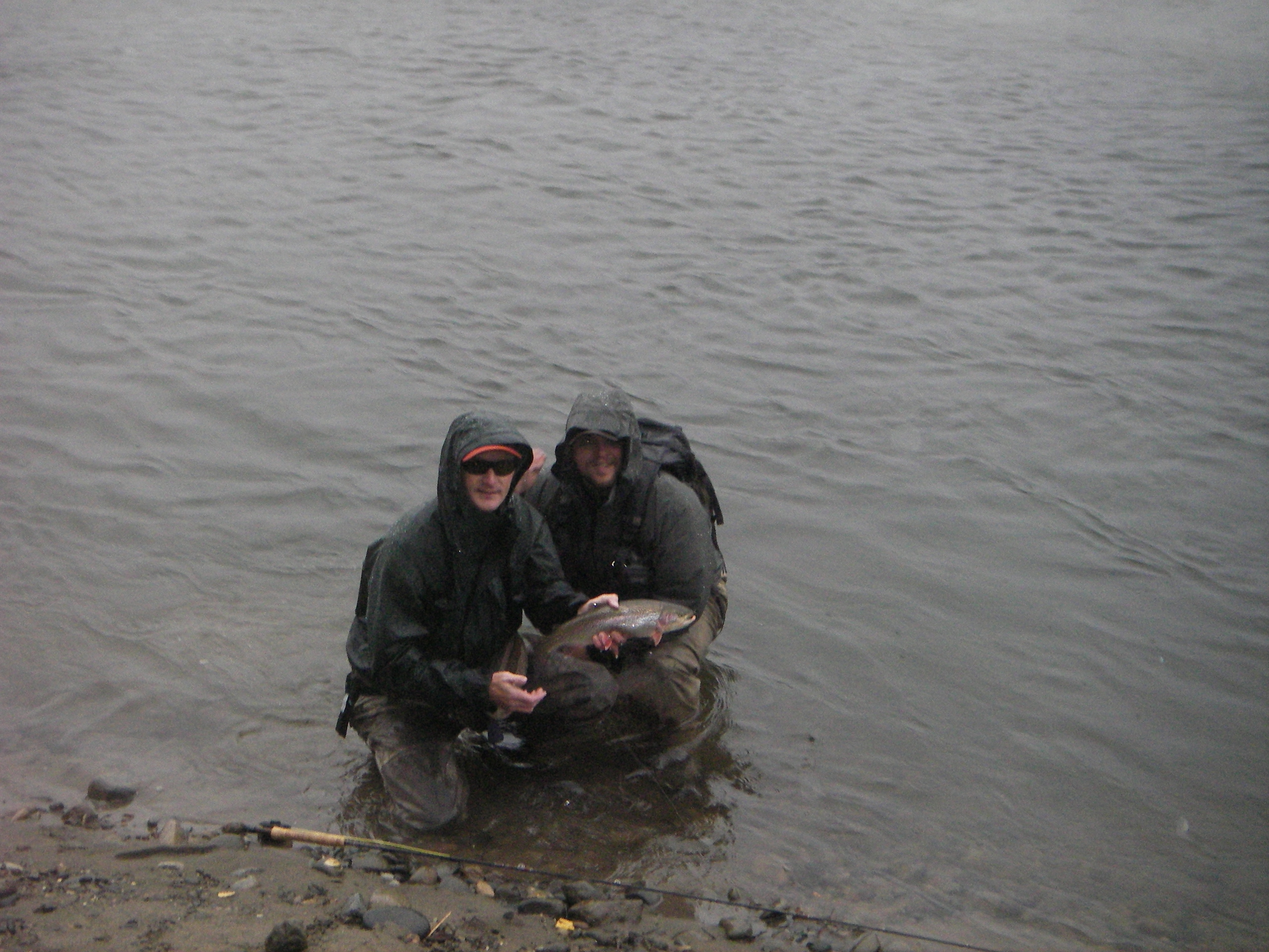 Willow Creek Alaska Guided Rainbow Trout Grayling and Dolly Varden Fly Fishing with Guide Scott Sager