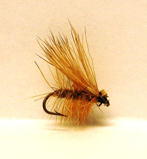 elk-hair-caddis-1