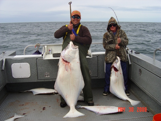 homer alaska halibut fishing drifting on the fly llc