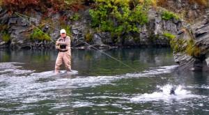 silver salmon fishing